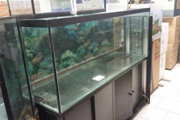 acquari usati milano vendita acquari e accessori